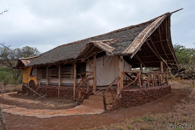 Национальный парк Амбосели в Кении. Сатао Элерой Лакшери кемп.