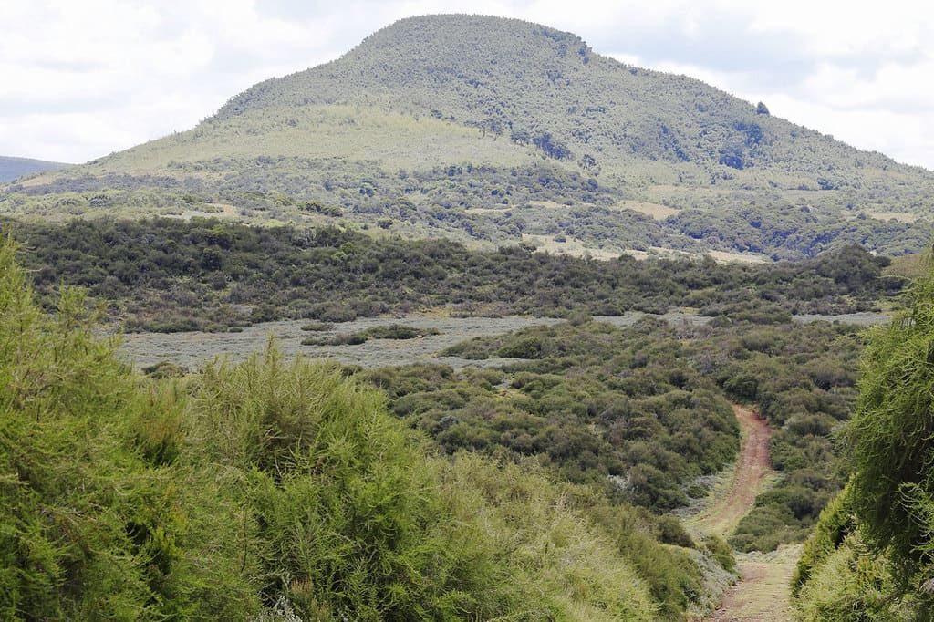 Абердаре, Кения