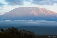 <p>Кения, Амбосели. Вулкан Килиманджаро.</p>