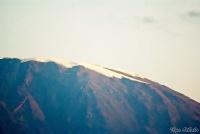 <p>Кения, Амбосели. Белые снега на вершине Килиманджаро</p>