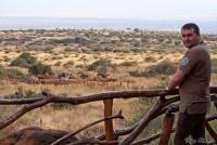 <p>Кения, Амбосели. Наблюдение за животными</p>