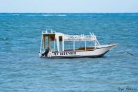 <p>Кения, Диани бич. Прогулочная лодка</p>
