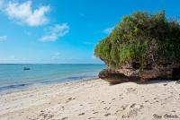 <p>Пляж в Диани Бич</p>