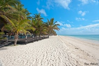 <p>Пляж у отеля&nbsp; Diani Reef</p>