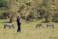 <p>Кения, Хеллс Гейт. Съемка зебр</p>