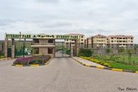 <p>Кения, Найроби. Жилые районы в пригороде</p>