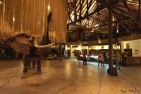 <p>Кения, Найроби. Отель Сафари Парк</p>