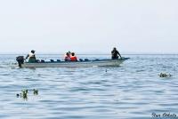 <p>Кения, озеро Найваша. Прогулка на лодке</p>