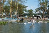 <p>Кения, озеро Найваша. Лодочная станция</p>