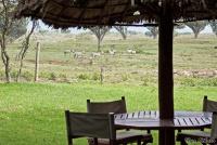 <p>Кения, озеро Найваша. Чуи лодж. Место для наблюдения за животными</p>