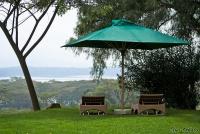 <p>Кения, озеро Найваша. Кангази хаус. Место для релакса</p>