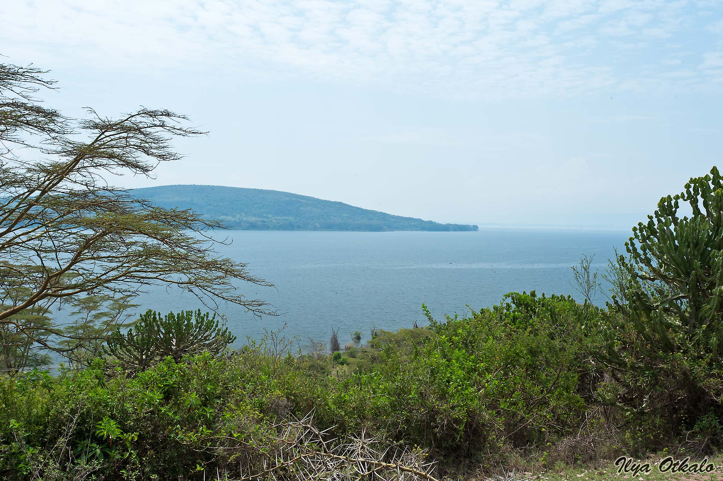 Озеро Найваша. Пейзаж