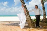 <p>Кения, свадьба на берегу океана. У пальмы</p>