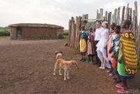<p>Кения, свадьба по обрядам масаев. Женщины деревни</p>