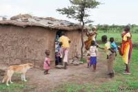 <p>Кения, свадьба по обрядам масаев. Всем любопытно, что же там делают</p>