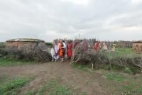 <p>Кения, свадьба по обрядам масаев. Идем встречать закат</p>