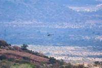 <p>Кения, Тсаво. Вертолет</p>