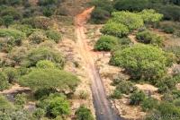 <p>Кения, Тсаво. Черное и красное</p>