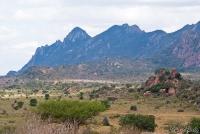 <p>Кения, Тсаво. Пейзаж с горами</p>