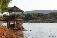 <p>Кения, Лойк Тсаво Кемп. Беседка для кормления крокодилов</p>