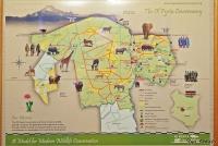 <p>Кения, парк Оль Педжета. План-схема.</p>