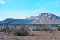 <p>Кения, Национальный парк - заповедник Шаба.</p>