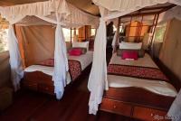 <p>Кения, Национальный парк - заповедник Самбуру. В номере отеля Самбуру Интерпидс.</p>