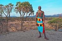 <p>Кения, воин племени Самбуру.</p>