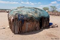 <p>Кения, жилище племени Самбуру.</p>