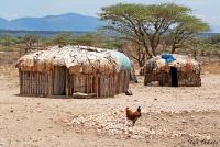 <p>Кения, в деревне Самбуру.</p>