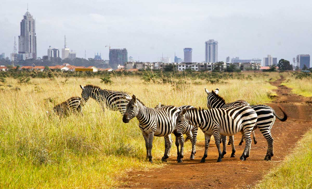 Nairobi national park entrance
